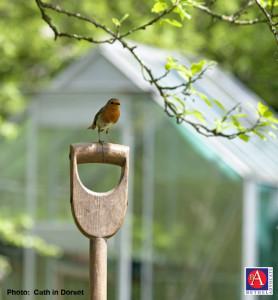gardenbirdshovelhandle