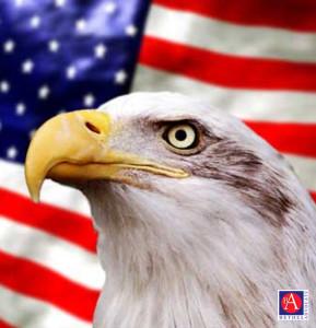 VeteransDayEagleFlag