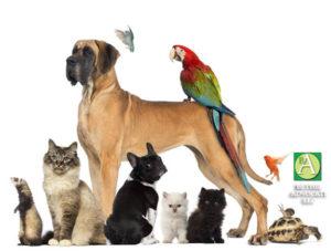 animalsblessinglogo