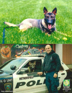 k9thorcomposite